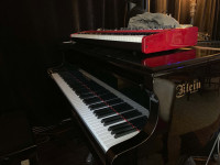 Piano 2 EX with Hard Case